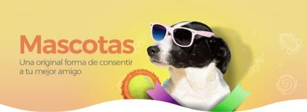 La mejor tienda de Regalos Online para Mascotas ¡Xoppal, Detalles para tu mascota!